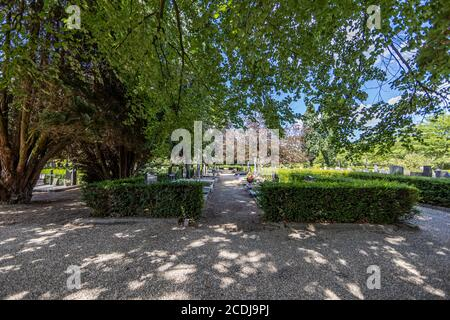 Sittard, South Limburg / Netherlands. August 4, 2020. General cemetery (Algemene Begraafplaats) with its paths of dirt, bushes, trees and graves - Stock Photo