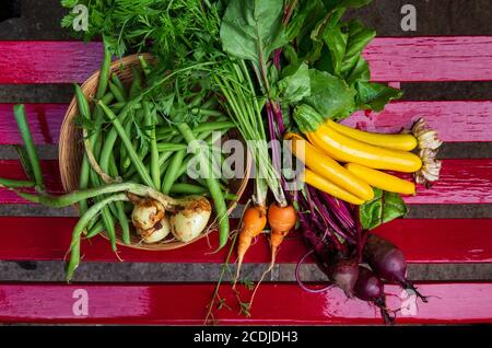 organic vegetables, colorful zuchini - Stock Photo