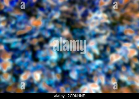 Neon background. Abstract blurred colorful background with neon colors. Wallpaper for desktop