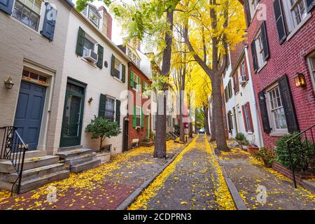 Autumn alleyway in a traditional neighborhood in Philadelphia, Pennsylvania, USA. Stock Photo