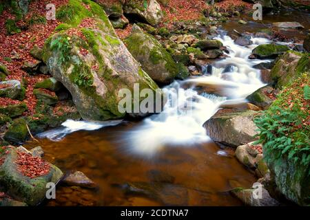 The river Ilse at Ilsenburg in the Harz National Park in Germany - Stock Photo