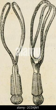 . Lectures on natural and difficult parturition . Fig. 13.—Hamiltons Forceps.. - Stock Photo