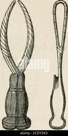 . Lectures on natural and difficult parturition . Fig. 2.—Smellies Forceps. - Stock Photo