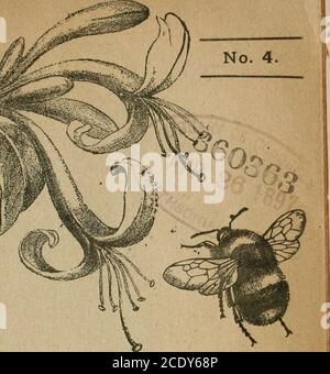 . The Entomologist's record and journal of variation . THE ^ ENTOMOLOGISTS RECORD AND JOURNAL OF VARIATION Edited by J. W. TUTT, F.E.S. APRIL 15th, 1897,