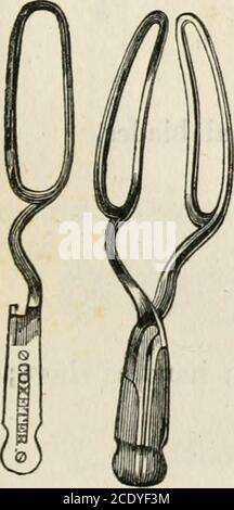 . Lectures on natural and difficult parturition . Fig. 3.—Denmans Forceps.. - Stock Photo