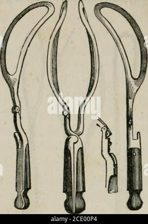 . Lectures on natural and difficult parturition . must not be understood as wash-ing to depreciate the value of those we reject. In the construc-tion of these instruments, two different principles seem to havebeen followed. Some have wished to render the mechanism ofthe forceps as perfect as possible; others have sought simplicityin its construction. The former have contrived instruments ofgreat power, but which are not very easily applied ; the latterhave succeeded in the facility with which their forceps may beapplied, although with some of them the power is extremelylimited. Your late respe - Stock Photo