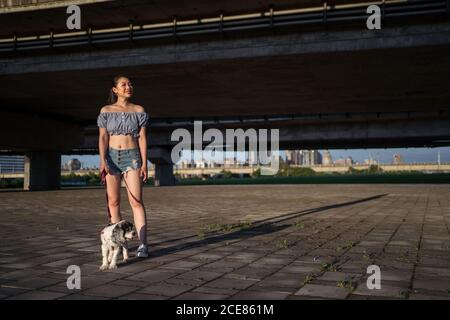 Fit positive Asian woman in casual clothes standing on pavement with small obedient purebred dog and looking away near bridge on sunny day in summer - Stock Photo