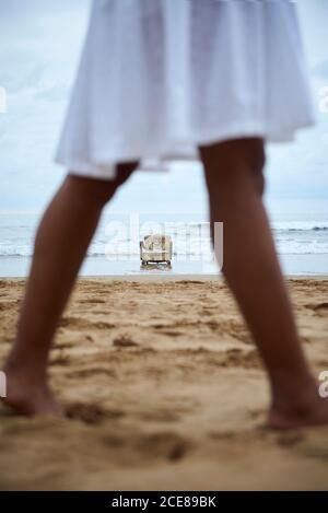 Side view of crop anonymous barefoot black female in white dress standing on sandy beach with old fashioned chair placed on sea water