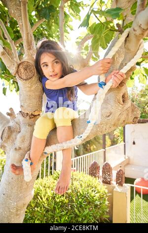 Low angle of positive little girl sitting on tree branch and preparing for jump with rope while having fun in green yard in summer day - Stock Photo
