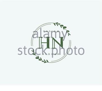 Initial HN beauty monogram and elegant logo design - Stock Photo