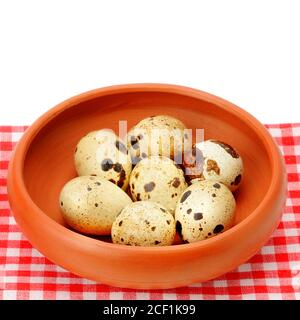 Guail eggs in bowl isolated on white background . Free space for text. Stock Photo