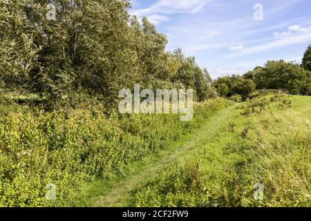The Thames and Severn Way long distance footpath beside the disused Stroudwater Navigation near Saul, Gloucestershire UK - Stock Photo