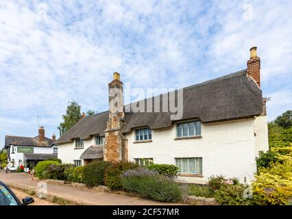 A pretty roadside thatched cottage at Otterton, a picturesque quaint small village in the Otter Valley in East Devon, south-west England