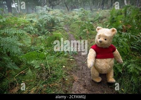 Winnie The Pooh Christopher Robin 2018 Stock Photo Alamy
