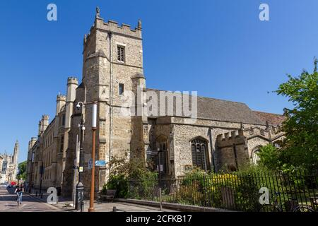 The St Botolph's Church (Anglican Church) on Trumpington Street, Cambridge, Cambridgeshire, UK. - Stock Photo
