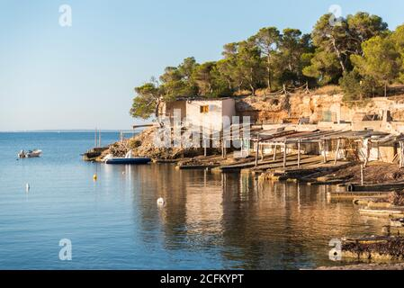 Picturesque scenery of cove near sea with rocky shore and trees under blue sky in Sa Caleta - Stock Photo