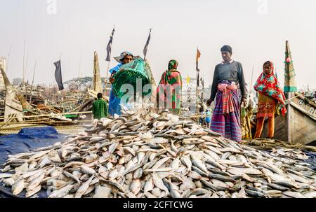 Chittagong, Bangladesh, December 23, 2017: Fishermen bringing fresh fish from the boat at the port on the Karnaphuli River in Chittagong - Stock Photo