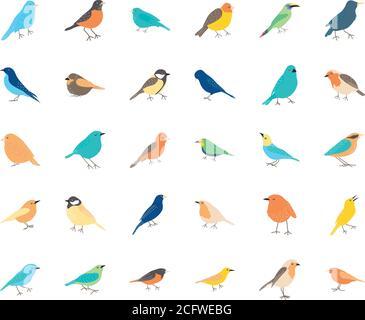 icon set of birds over white background, flat style, vector illustration