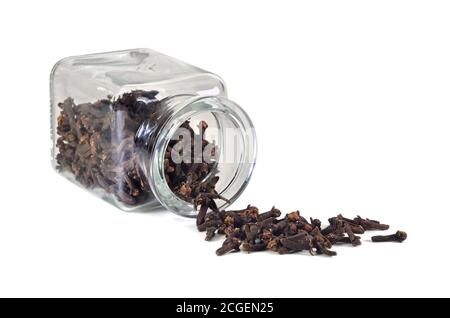 Spice cloves. Carnation in a jar for spices on a white background. Isolated, closeup.
