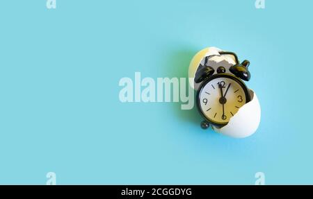 Time in the egg shell, watch concept - Stock Photo