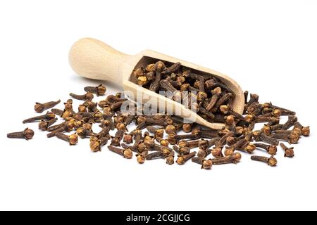 Dried clove spice in the wooden scoop isolated on white background. Full depth of field close-up.