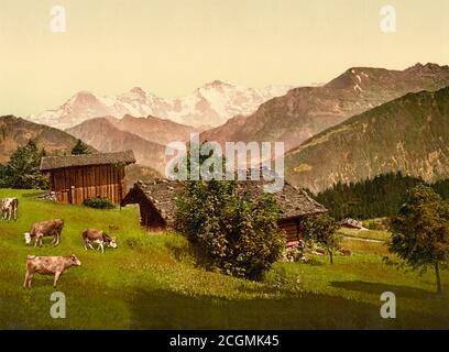 View of Jungfrau, Monch and Eiger from Beatenberg,  Interlaken, Bern, Switzerland  1890. - Stock Photo