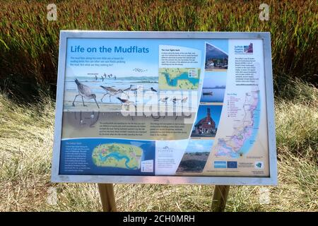 Snape, Suffolk, UK - 13 September 2020: Sunny Sunday autumn afternoon by the River Alde. Life on the mudflats information board. - Stock Photo