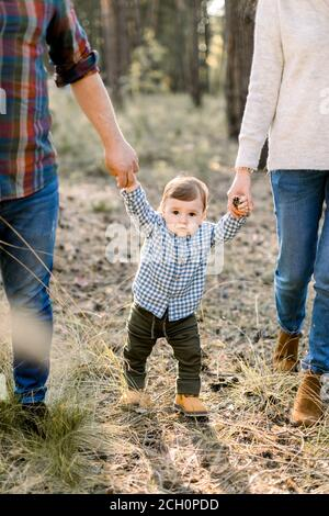 Cropped image of young parents walking with their little son in autumn park or forest, holding hands. Autumn outdoor portrait. Family, parenthood and