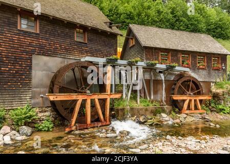 Hexenloch Mill, water mill near Furtwangen in the Black Forest, Baden-Wuerttemberg, Germany