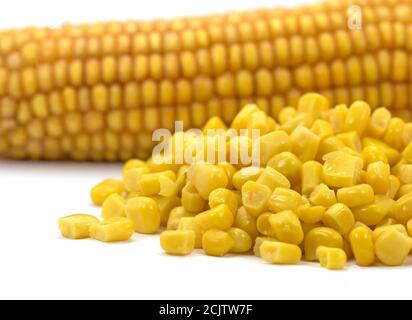 Corn kernels and corn on the cob against a white background - Stock Photo