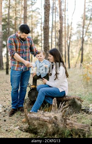 Family walk in the autumn forest. Pretty young mother and her little son sitting on an old log of a fallen tree and having fun with their handsome - Stock Photo