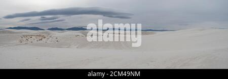View of White Sands National Park gypsum sand dunes with vegetation. Stock Photo