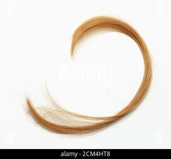 Cut hair curls on Gray background.