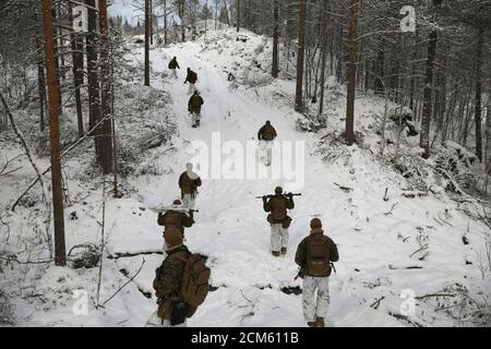 U.S. marines of Fox Company, 2nd Battalion, 6th Marine Regiment, part of Marine Rotational Force - Europe take part in 'Reindeer 2', a Norwegian-U.S. military drill, in Setermoen, Norway, October 29, 2019. REUTERS/Stoyan Nenov    SEARCH 'NORWAY-RUSSIA BORDER' FOR THIS STORY. SEARCH 'WIDER IMAGE' FOR ALL STORIES.