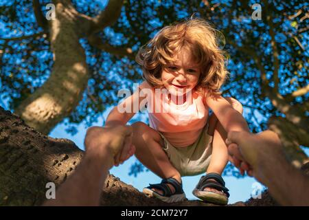 Happy young boy Child sitting in a tree. Parent holds the hand of a child. Father teaching son climb tree.