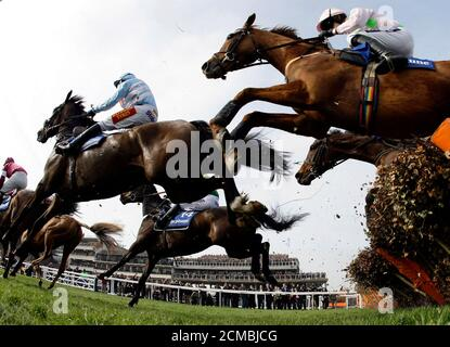 Horses jump a fence during hurdle race at the Cheltenham Festival horse racing meet in Gloucestershire, western England March 14, 2012. REUTERS/Stefan Wermuth (BRITAIN - Tags: SPORT HORSE RACING) - Stock Photo