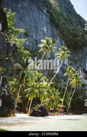 El Nido, Palawan, Philippines. Secluded tropical hut under palm trees on Pinagbuyutan Island.
