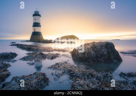 Penmon Lighthouse on coastal rocks, Anglesey, Wales, UK - Stock Photo