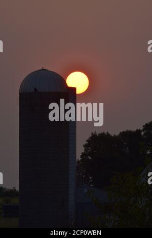 Hazy, smoke-filled sky from California and Oregon wildfires, with surreal, sunrise (no clouds) over barn and silo, Browntown, Wisconsin, USA - Stock Photo