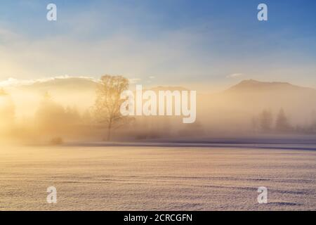Fog in the foothills of the Alps, Penzberg, Pfaffenwinkel, Upper Bavaria, Bavaria, Southern Germany, Germany, Europe - Stock Photo