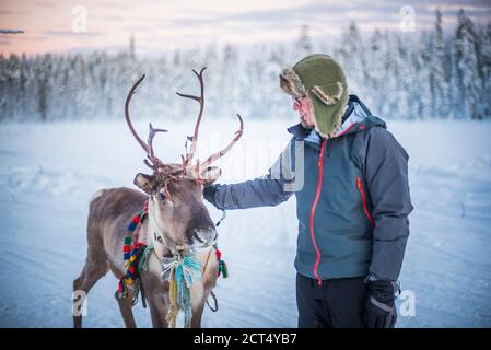 Person petting a reindeer at Christmas in winter in the Arctic Circle in Lapland, Finland