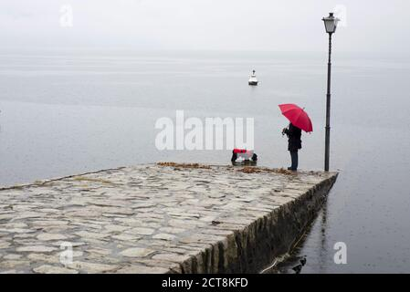 Woman with Her Dog and an Umbrella with Raincoat Standing on a Pier in Switzerland.