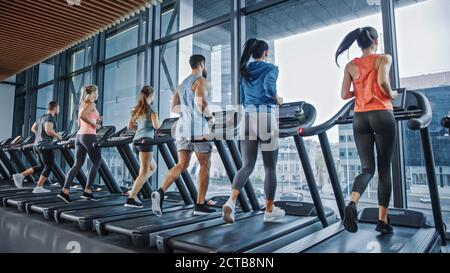 Group of Athletic People Running on Treadmills, Doing Fitness Exercise. Athletic and Muscular Women and Men Actively Training in the Modern Gym