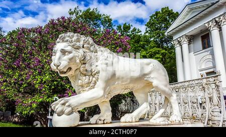 Marble sculpture of lion in the park of Yelagin island in St.Petersburg, Russia - Stock Photo