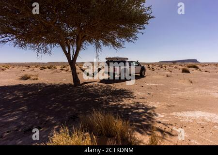 Man resting in hammock hanging between lone desert tree and off-road car