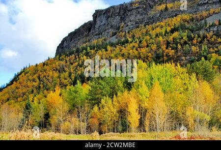 Mt. McKay beside Thunder Bay, Ontario, Canada has a precambrian rock face with golden birch trees and evergreens growing on it. Stock Photo
