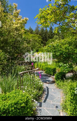 A stone path meanders through the trees and borders in the Model Garden at RHS Rosemoor, Great Torrington, Devon, England, UK - Stock Photo