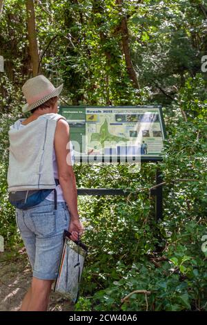 Woman reading sign post waymarker on the Ridgeway long distance footpath  trail in the Chiltern hills Buckinghamshire England - Stock Photo
