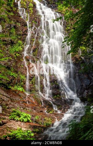 Powerful Pilj waterfall on Old mountain (Stara planina) in Serbia, cascading down the wet, red rocks and surrounded by vivid green trees - Stock Photo