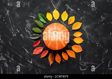 Raw pumpkin and a round frame of colored autumn leaves on a black stone background. Thanksgiving Day. Creative layout. View from above